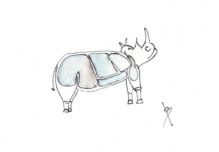 Wilfred Sameuls, a rhino