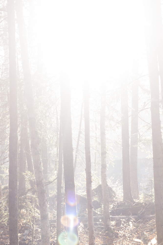 2013.10.23 - Prince George Trails