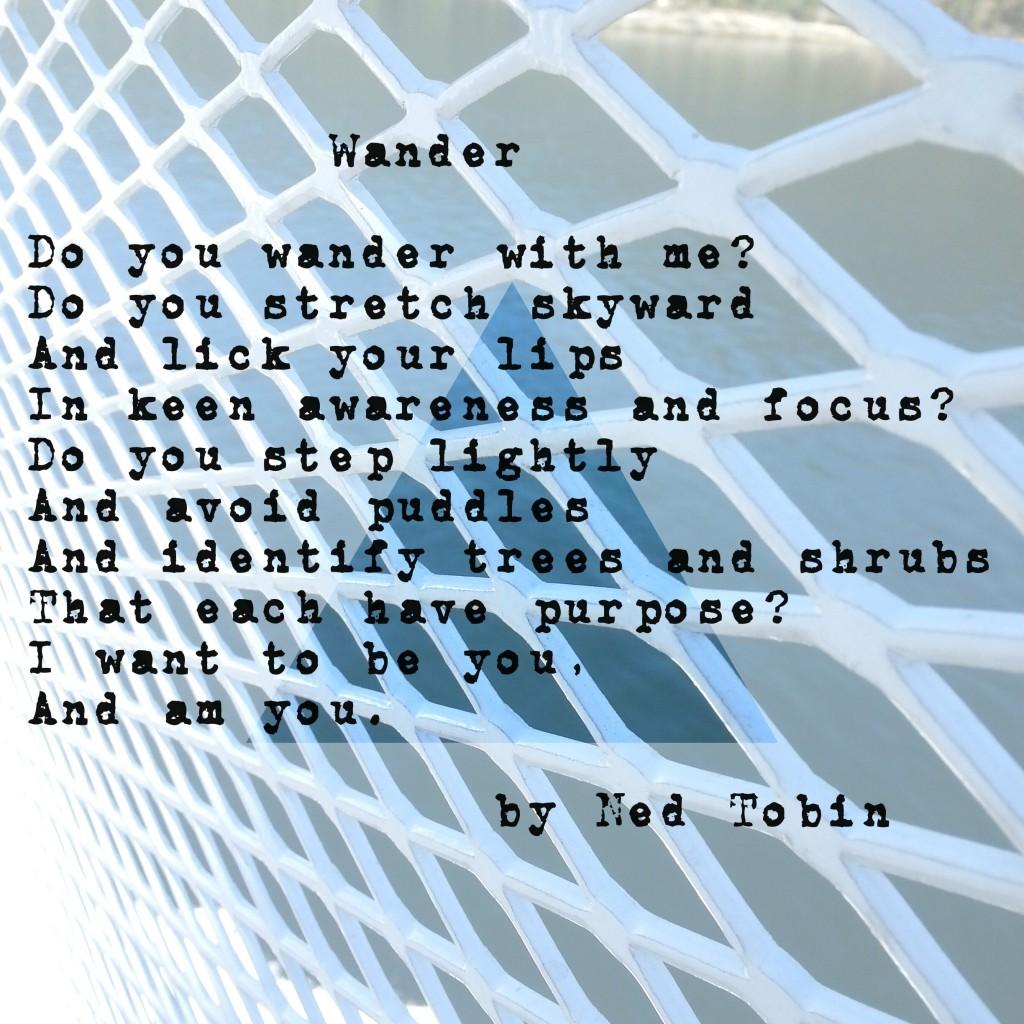 Wander by Ned Tobin