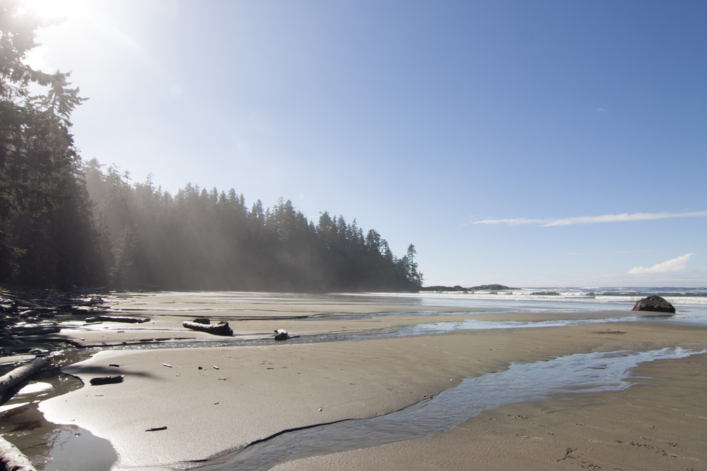 sunny ocean day in the pnw near Tofino, BC, pacific ocean
