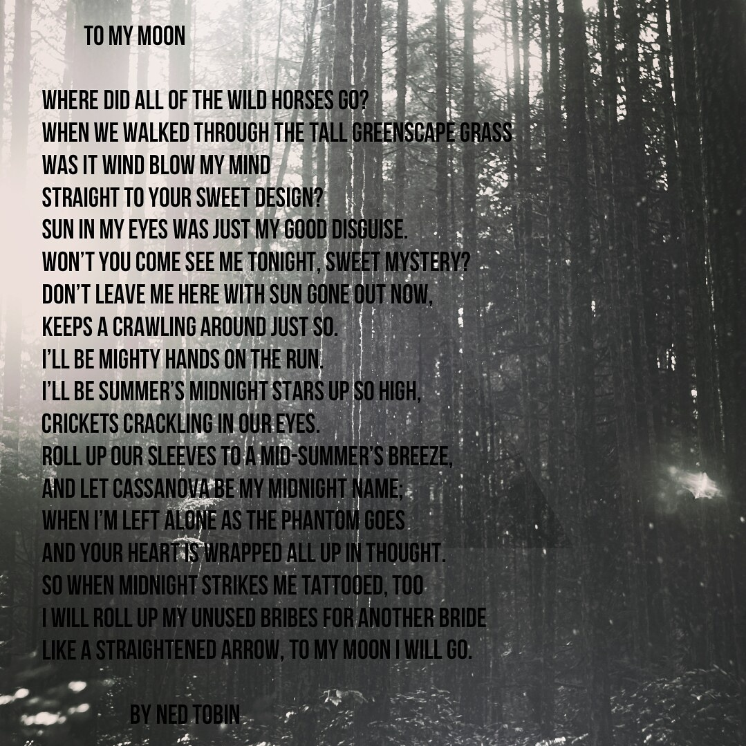 To My Moon by Ned Tobin