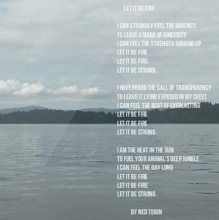 Let It Be Fire by Ned Tobin