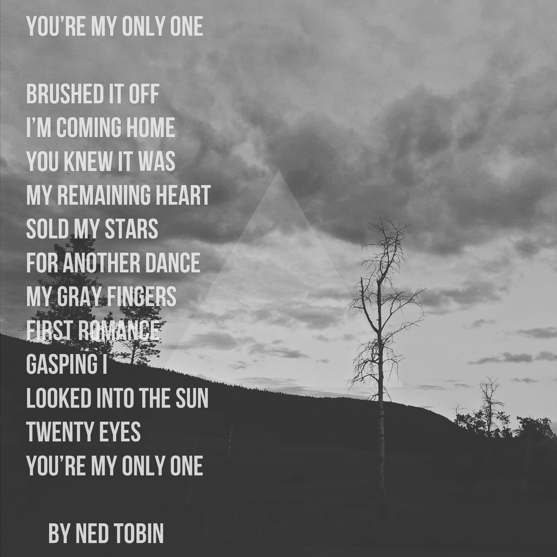 You're My Only One by Ned Tobin