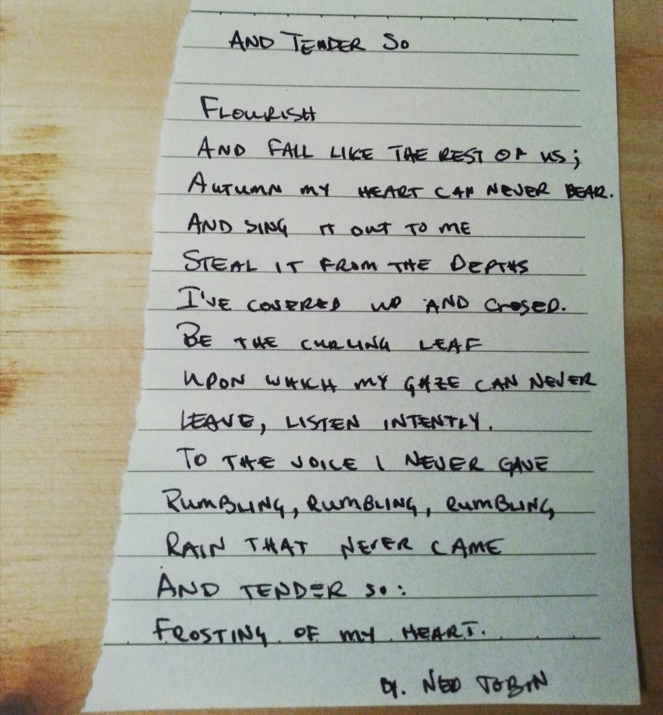 And Tender So by Ned Tobin