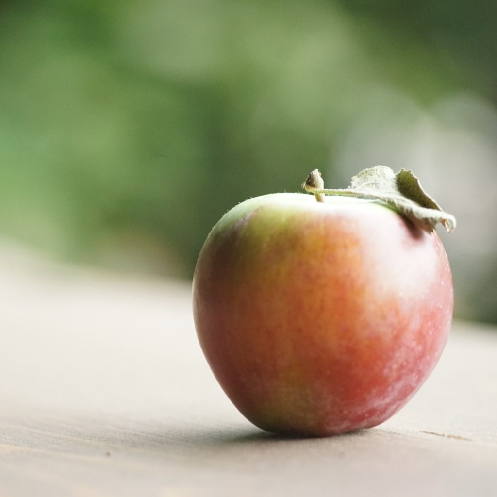 Ode to the Apple by Ned Tobin