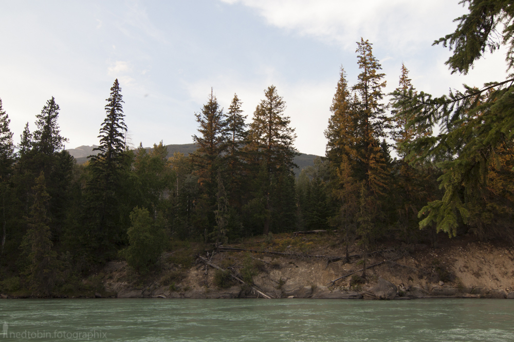 2013-08-mount-robson-9-of-496