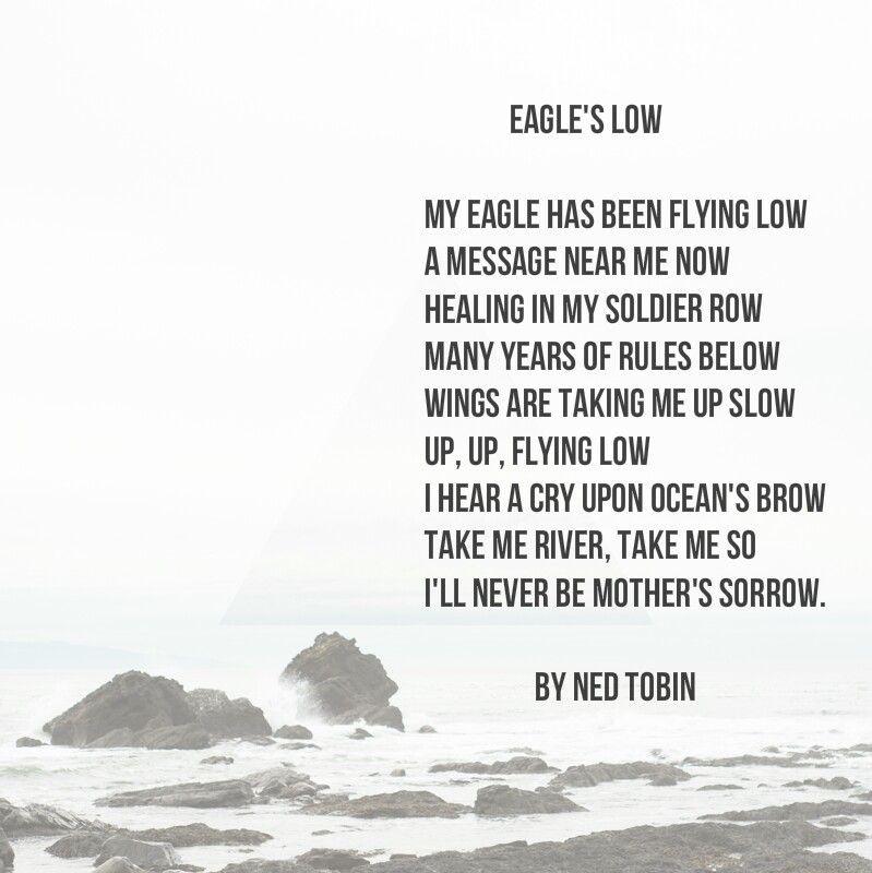 Eagle's Low by Ned Tobin