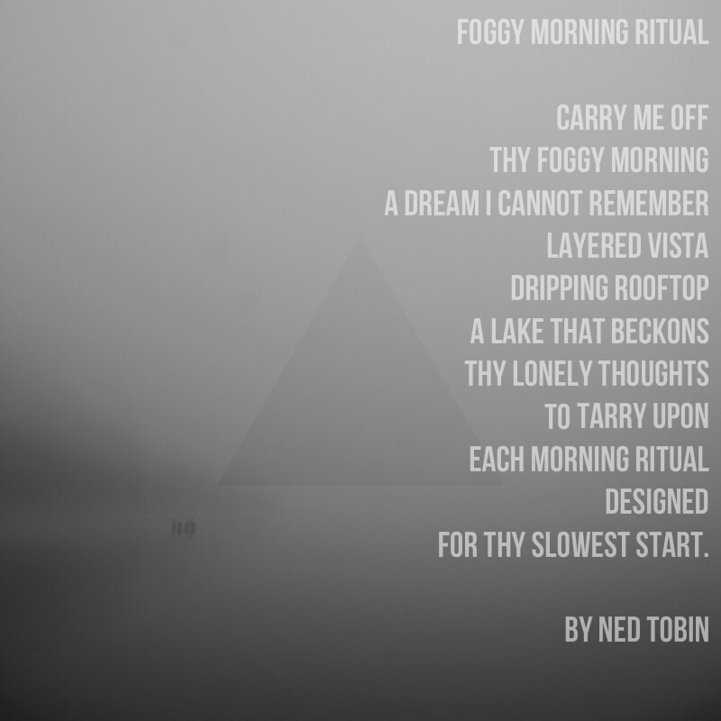 Foggy Morning Ritual by Ned Tobin