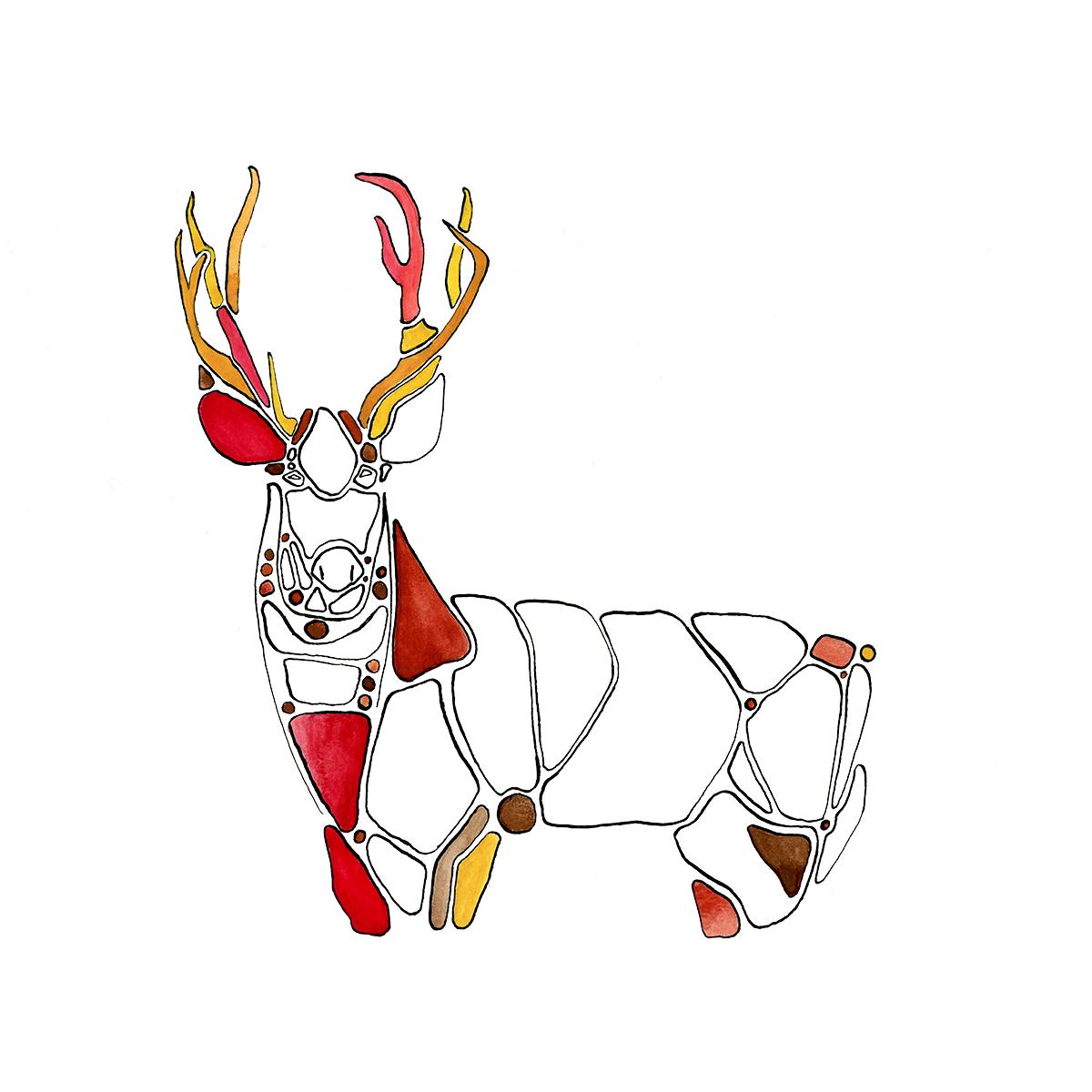 Mule-Deer watercolour painting by Ned Tobin